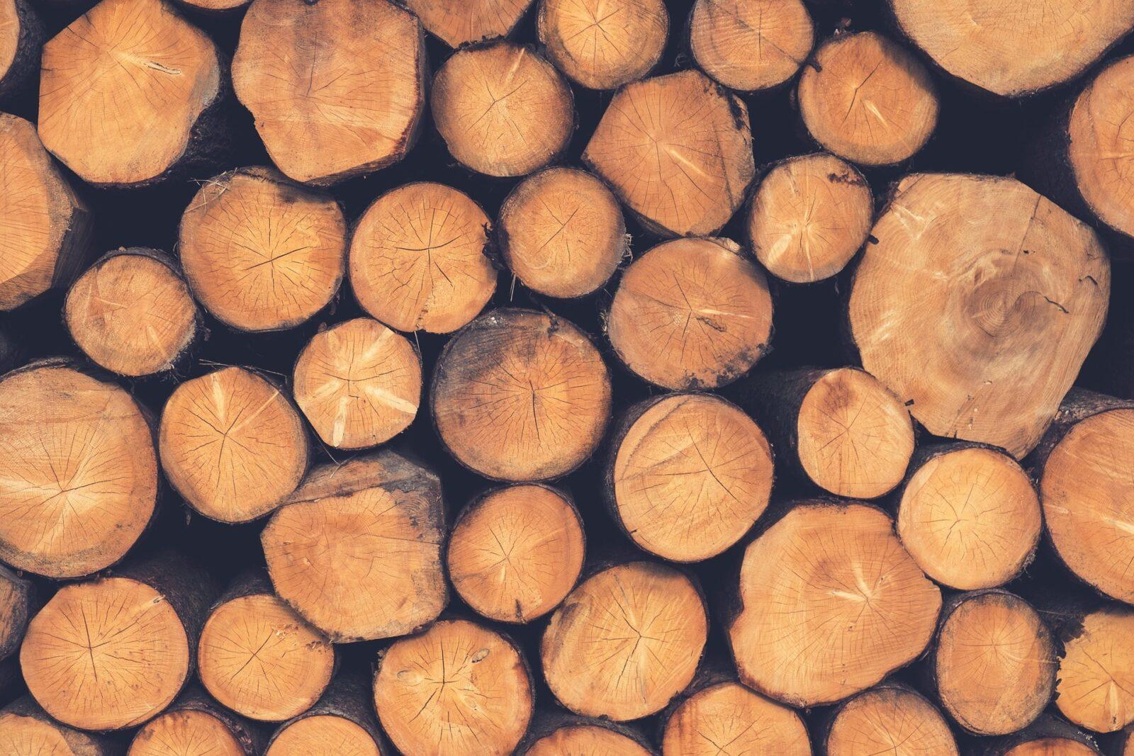 tipos de madera en costa rica